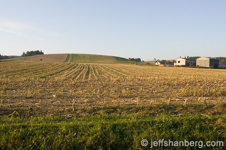 czech-countryside-field_B9I5197.jpg