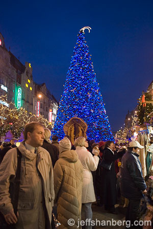 blue-christmas-tree-prague_B9I6234.jpg